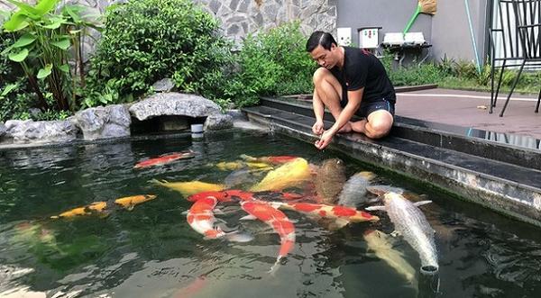 Mách bạn cách làm sao cho hồ cá nước trong hiệu quả và nhanh chóng