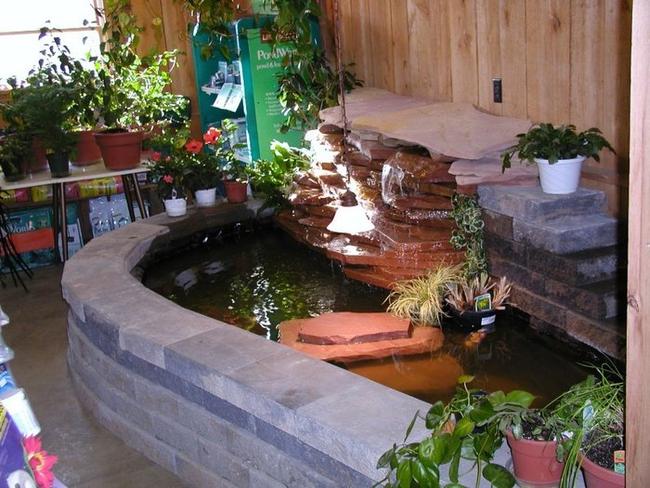 Thiết kế hồ cá koi nhỏ