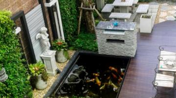 Thiết kế hồ cá koi trong nhà giá rẻ